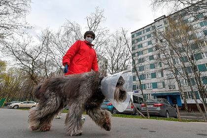 В Гидрометцентре дали прогноз на весну и лето Россия