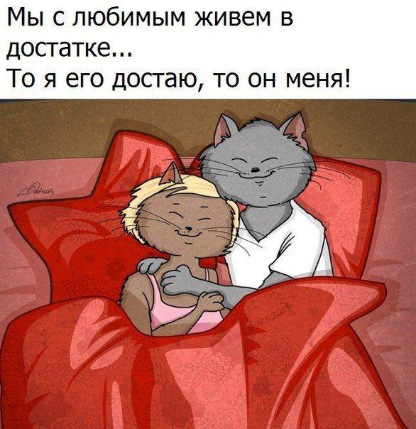 Смешные картинки ему с любовью