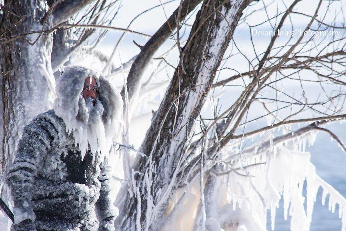 Если бы Аквамен жил на полюсе, он выглядел бы как-то так
