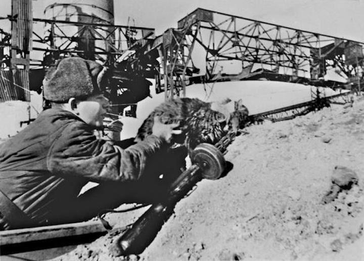 История кота-зенитчика Великая Отечественная Война