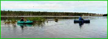 Рыбалку на рассвете надо начинать на мелководье, вблизи зарослей камыша