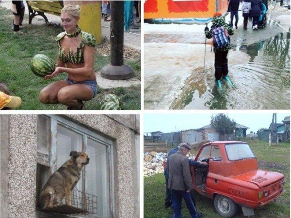 Забавные снимки с Российских…