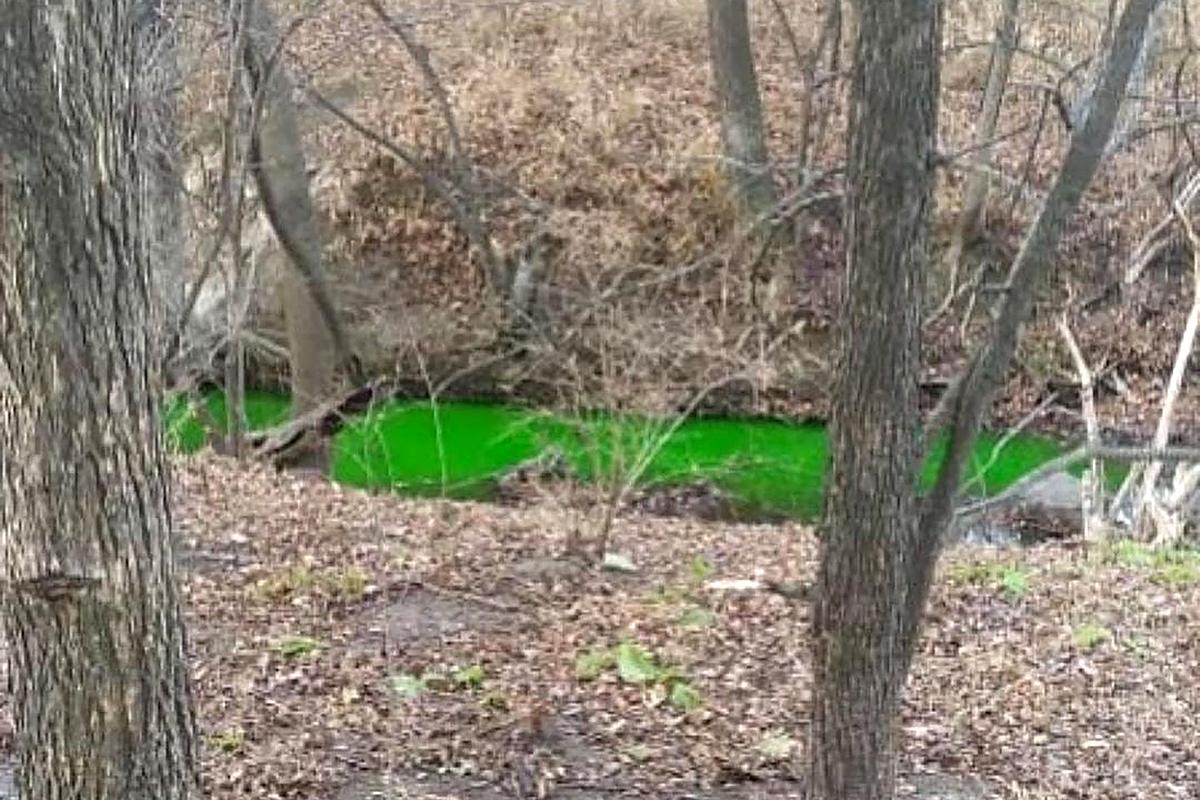 В Приморье сняли на видео реку ярко-зелёного цвета