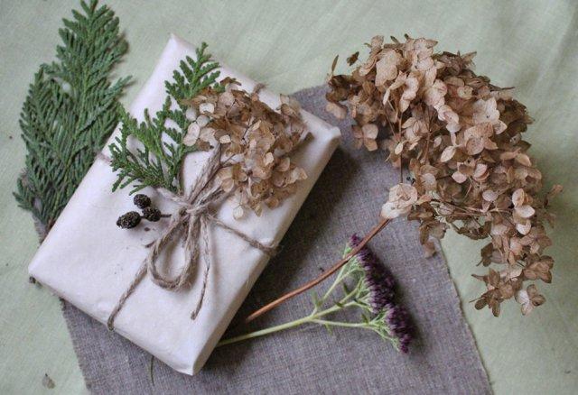 Что можно сделать из сухих цветов гортензии