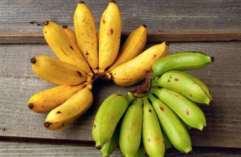 20 интересных фактов о бананах