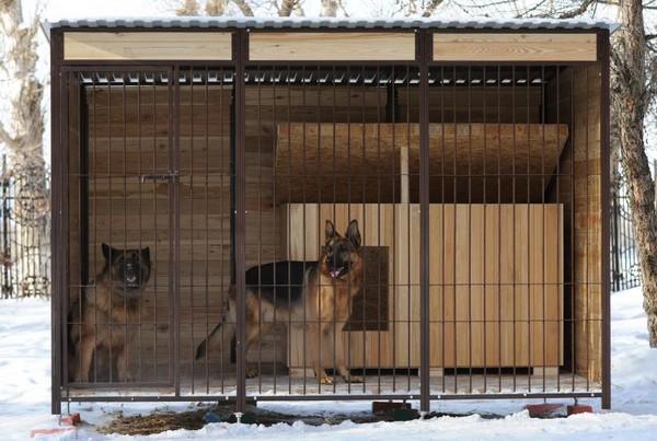 Вольер для собаки: комфортный дом четвероногого друга