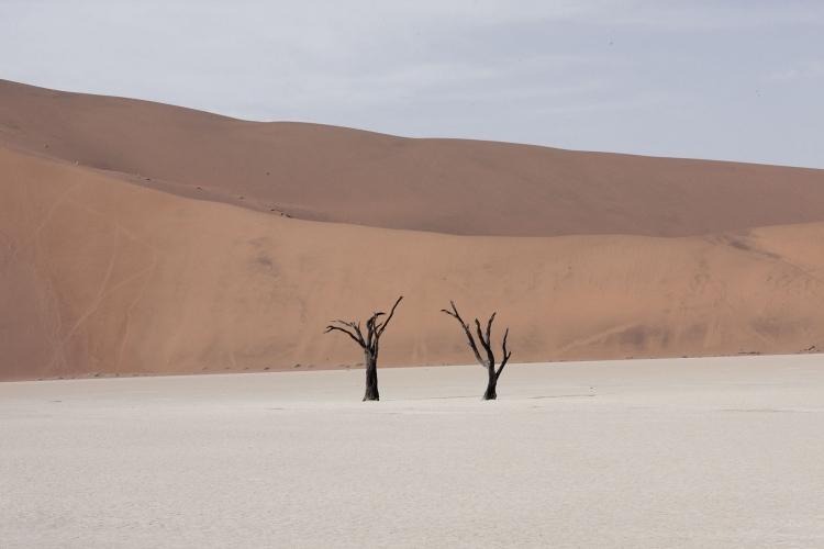 8 фото пустыни Намиб – места, где ничего нет мир,путешествие,туризм