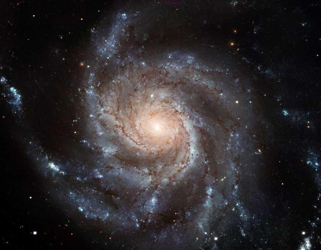 Астрономы выяснили, что все …