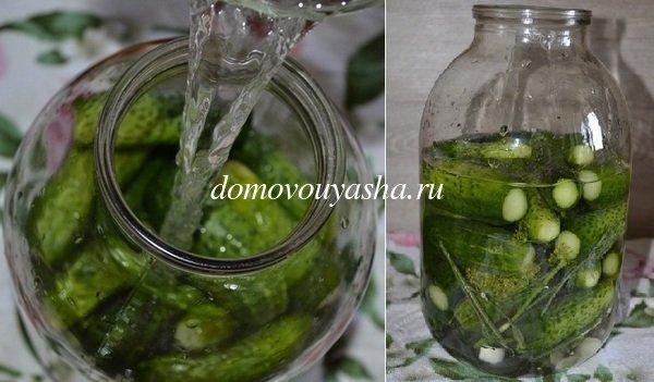 малосольные огурцы на минеральной воде рецепт