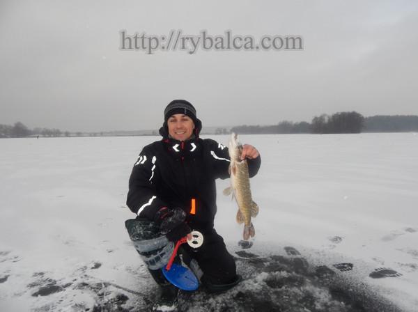 lovlya_na_zherlicy