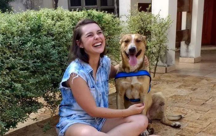 Они назвали его Снупом, и он стал частью их счастливой семьи гость, милота. добро, невеста, собака. свадьба. животные