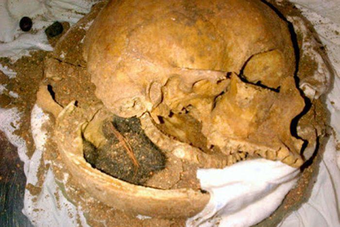 Куски человеческого черепа аэропорт, вещи, люди