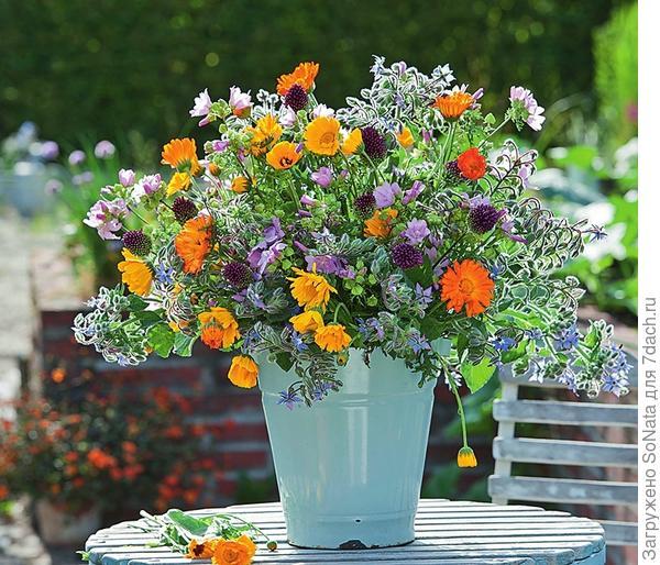 Пышный букет из календулы, огуречной травы, просвирника и соцветий декоративного лука - приветливая улыбка лета.