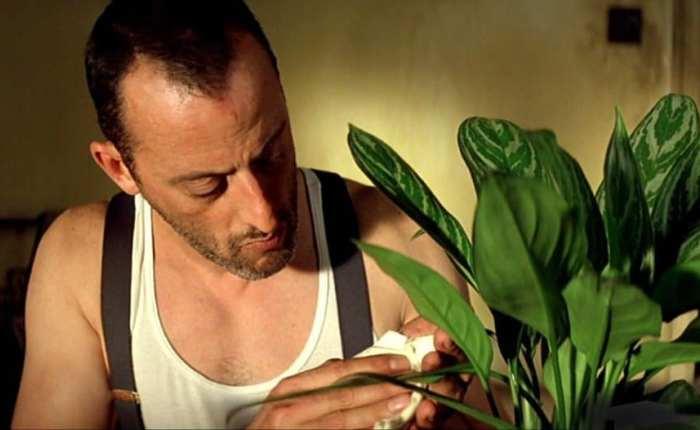 За кадром культового фильма 1990-х «Леон»: Почему Натали Портман забраковали на пробах кинохроника,«Леон»,Натали Портман,художественное кино