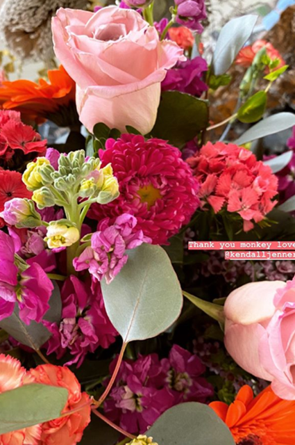 Джиджи Хадид отметила день рождения на семейной ферме Новости