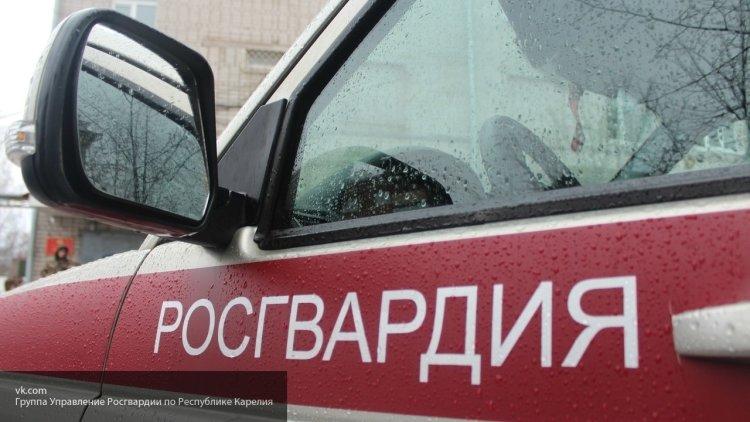 Росгвардейцы задержали в Мурманске похитительницу конфет, электробритвы и лосося