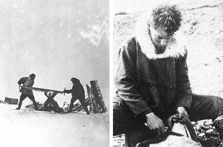 Маурер и Найт пилят дрова (слева). Галле вычищает шкуру (справа) Ада Блэкджек, арктика, интересно, история, познавательно, факты