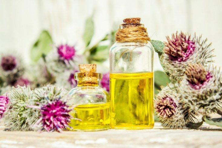 Бьюти-гид по лучшим маслам для волос волосы,здоровье,красота,масло для волос,уход за волосами