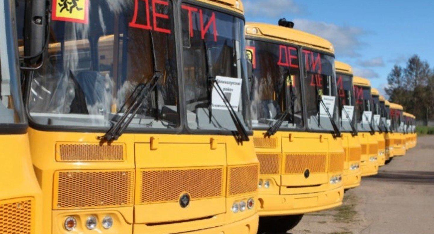 Путин обязал регионы к 2024 году обновить парк школьных автобусов Автомобили