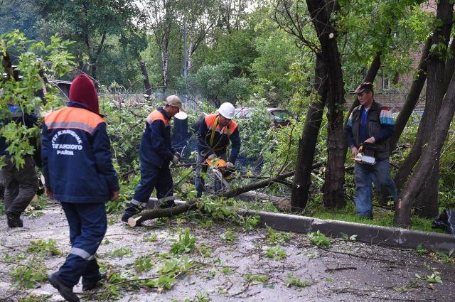 Жертвами урагана в Москве и области стали 14 человек