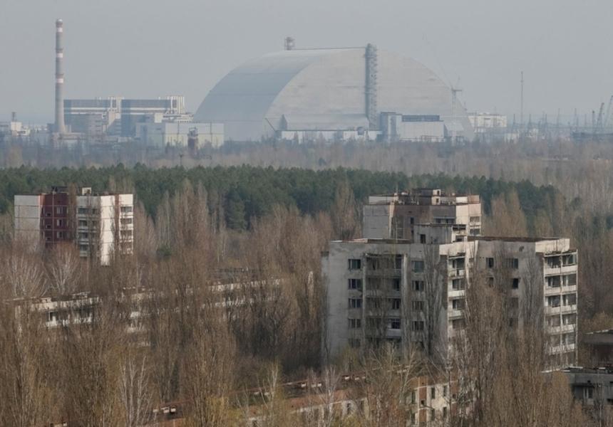 Возле Чернобыля высадили особенные деревья для поглощения радиации. Это поможет?