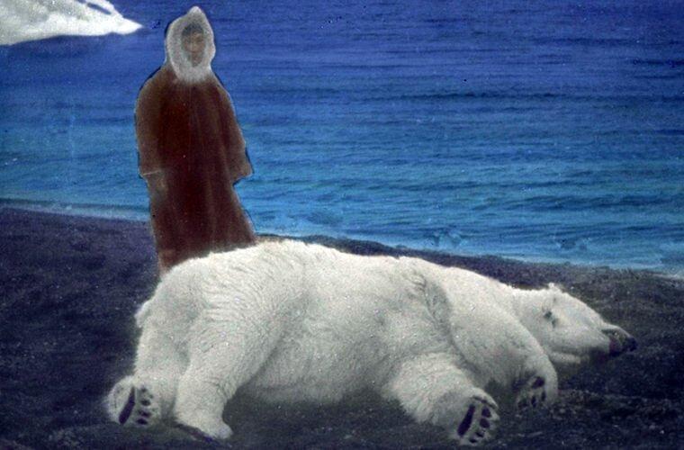 Ада и белый медведь Ада Блэкджек, арктика, интересно, история, познавательно, факты