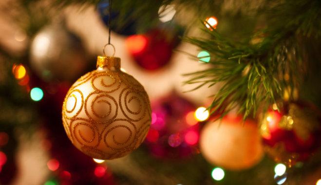 12 секретов, которые нужно знать при покупке рождественской елки