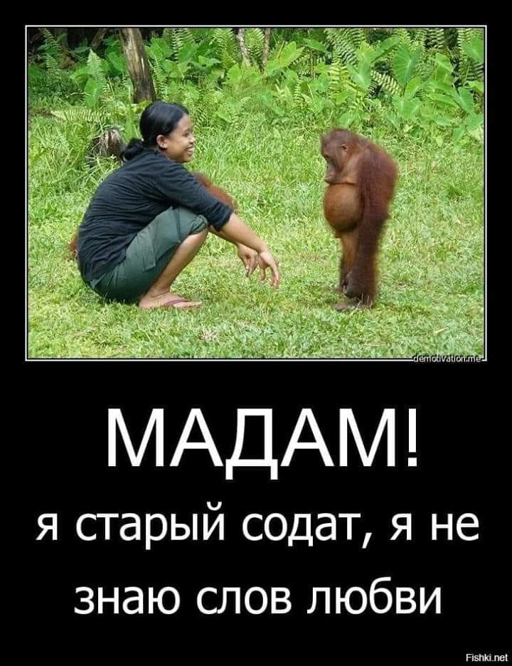 Влепил как-то раз Иван-Царевич хороших люлей Варваре-Прекрасной...