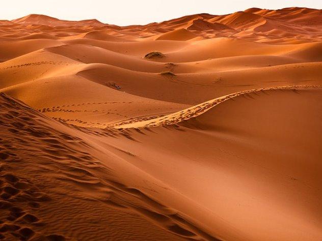 Россиянину доставили избирательный бюллетень в пустыню Судана