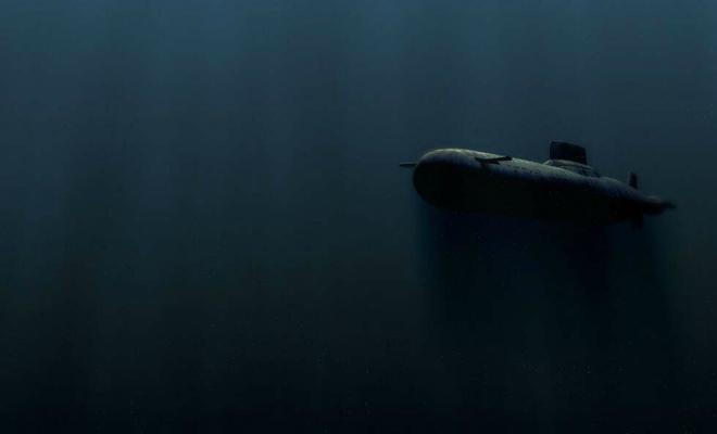 Швеция 15 лет слушала звуки сельди, принимая рыбу за советские субмарины Культура
