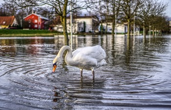 В Волгоградской области ликвидируют последствия паводка
