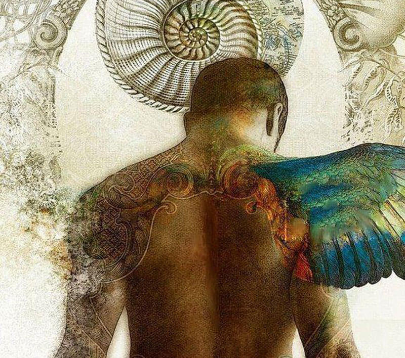 Принципы ИСЦЕЛЕНИЯ организма: мы есть ТО, ЧТО у нас усваивается.