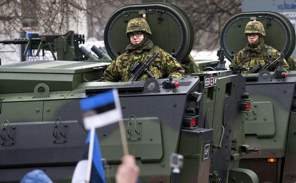 «Хвост вертит собакой». Мнение о заявлении в Эстонии про подготовку к войне