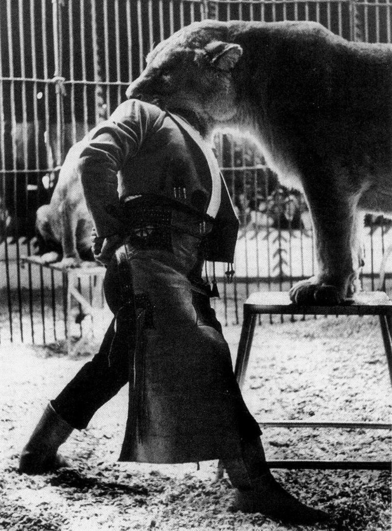 Цирковой дрессировщик Пабло Ноэль во время исполнения номера, Испания, 1962 год. история, классика, фото