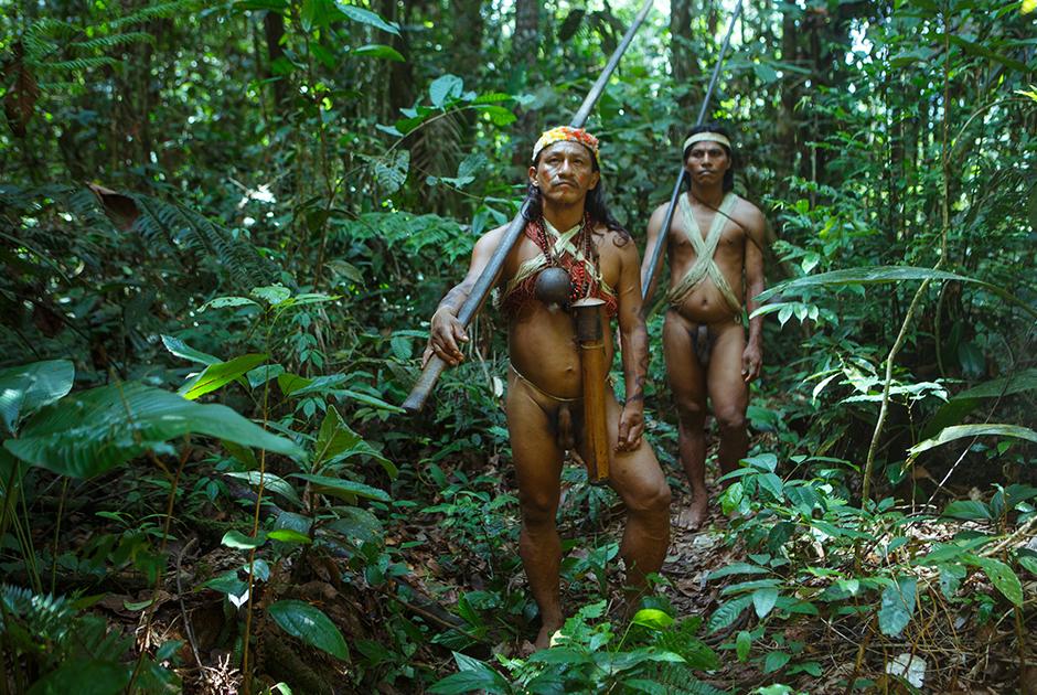 Пьяными джунгли дикие люди смотреть сучка ожидала что