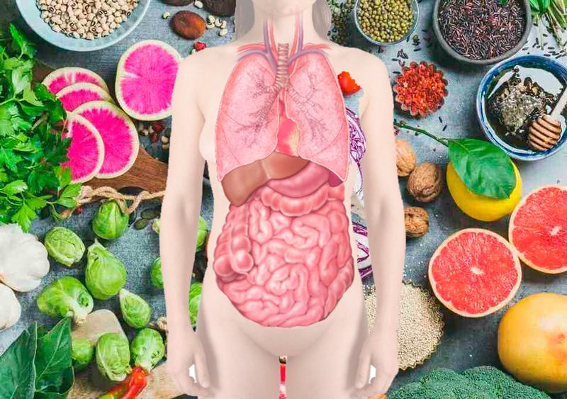 Как правильно сочетать продукты, чтобы улучшить здоровье