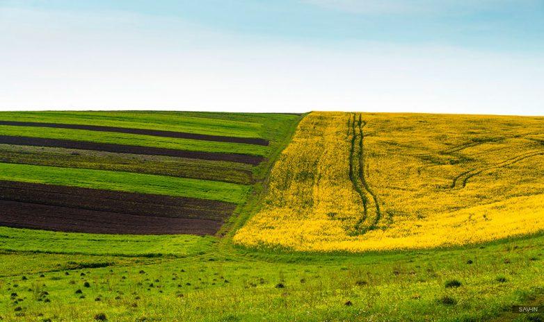 На пороге неба: весенние Карпаты из первых уст,Карпаты,Украина