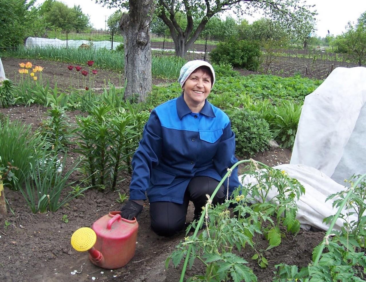Полезные советы не только начинающим, но и опытным огородникам