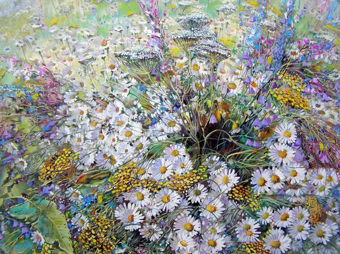 Ромашковое поле... Александр Сердюков живопись,природа