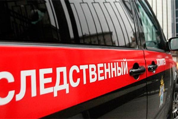 Обвиняемые в убийстве пенсионерки в Подмосковье мигранты арестованы