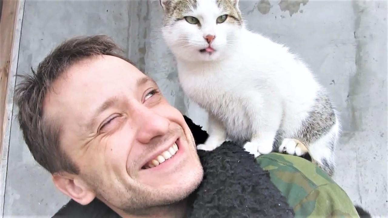 коты, кошки, попугаи и немно…