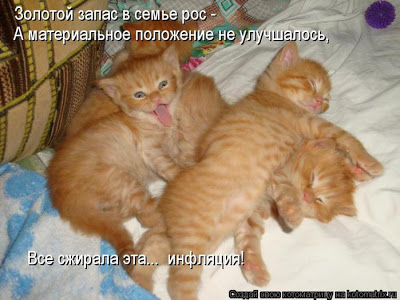 """Продолжение """"Истории про маленького рыжего котенка"""""""