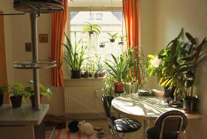 8 маленьких хитростей, как обустроить съемную квартиру, если владельцы против ремонта можно, помощью, вариант, легко, старые, квартире, станет, более, ванной, гостиной, мебель, декоративные, использовать, наклейки, квартиру, помогут, освещения, Изделия, комнаты, 3Dпанели