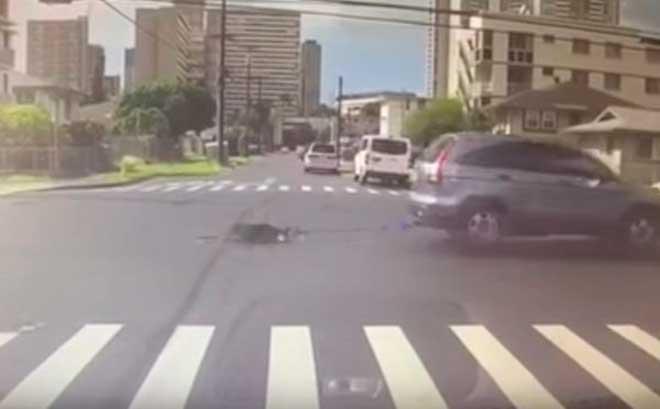 Прямо перед ним на большой скорость проехала машина, сзади которой волочился песик...