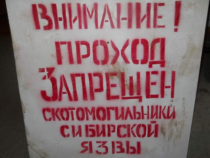 В Сибири могут начать таять скотомогильники с сибирской язвой