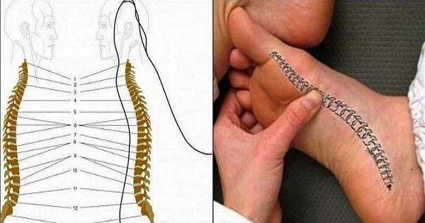 Болит спина? Благодаря этому чудодейственному массажу стоп ты избавишься от проблемы