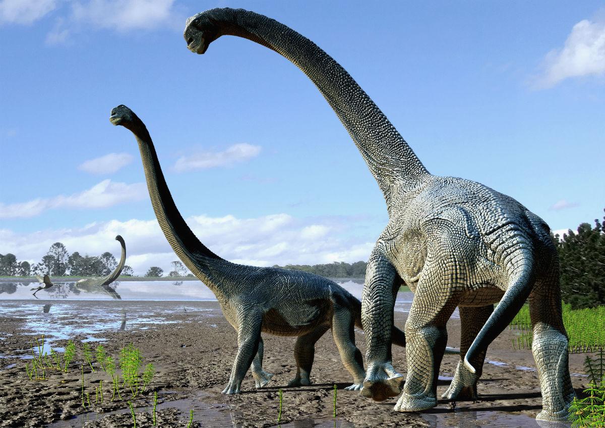 Новый вид титанозавра совершал вояж из Южной Америки в Австралию через Антарктиду