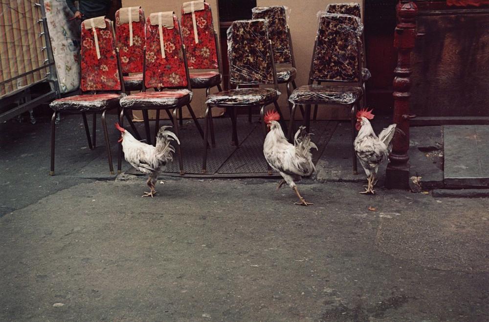 Уличная жизнь Нью-Йорка с 1930-х до 80-х годов в фотографиях Элен Левитт 11