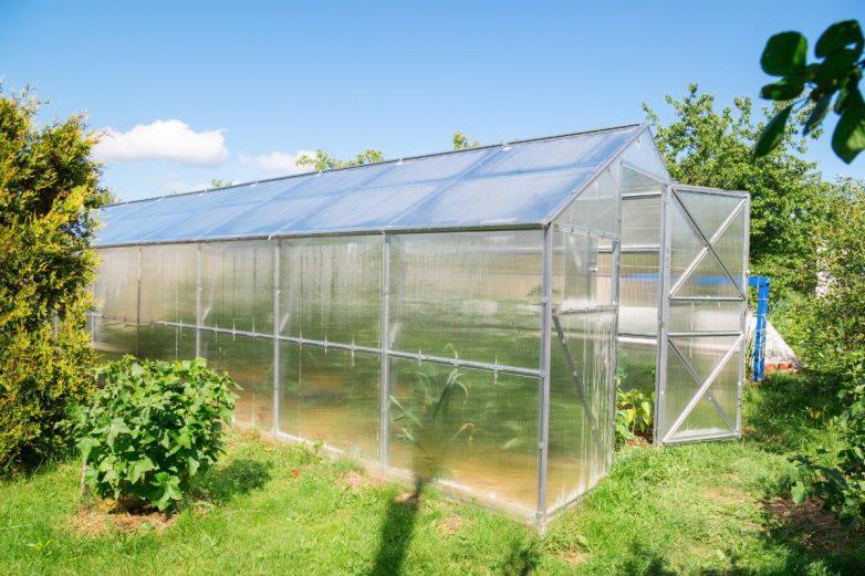 Как спасти от жары овощи в теплице