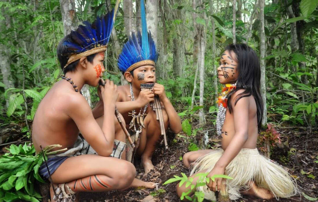 Порно джунглях племюн